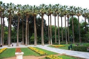 jardim nacional (1)