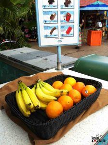 Algumas barraquinhas no AK vendem frutinhas para quem quer se manter saudável. Eu fui no sorvete :P