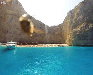Só pra registrar que minha foto ia sair linda, se não fosse essa abelha!