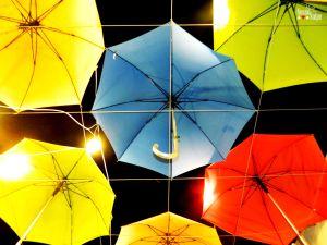 umbrella 2