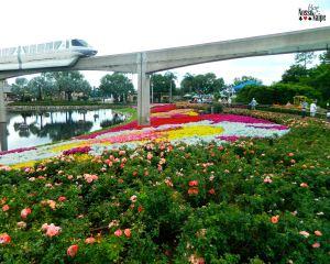 O monorail passa por dentro do Epcot. Quem nunca sonhou em ir para Disney e andar nele?