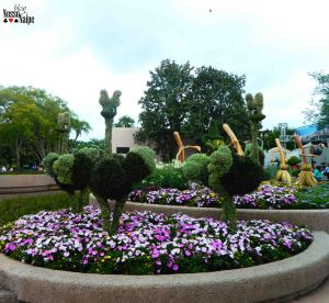 Mais do Flower and Garden Festival.