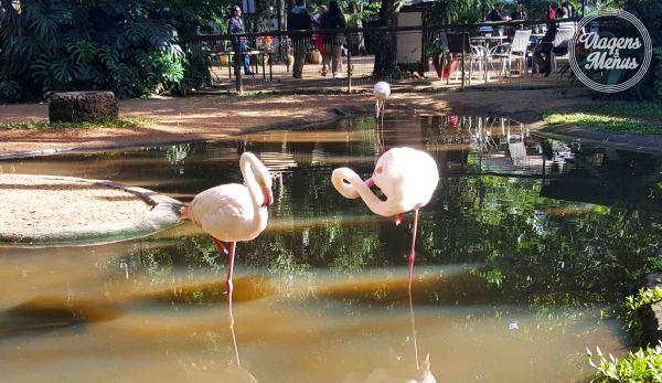 parque das aves 11