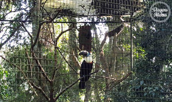 parque das aves 30