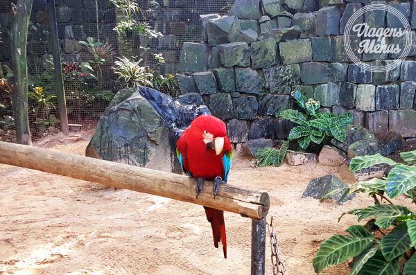 parque das aves 34