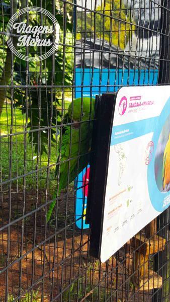 parque das aves 8