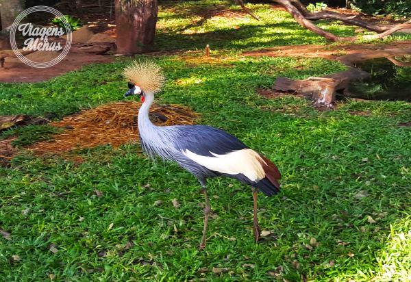 parque das aves 9