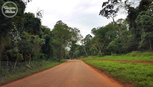 Estrada em meio a Selva de Iriapú.
