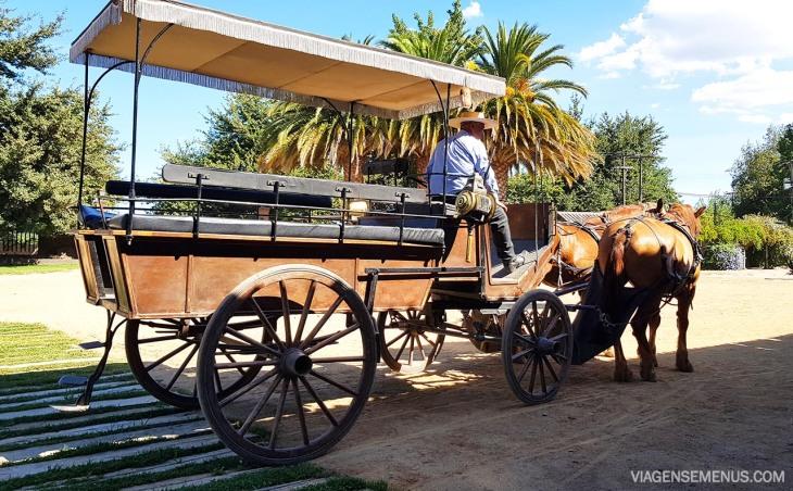 Vinícola Viu Manent, Vale do Colchagua, Chile